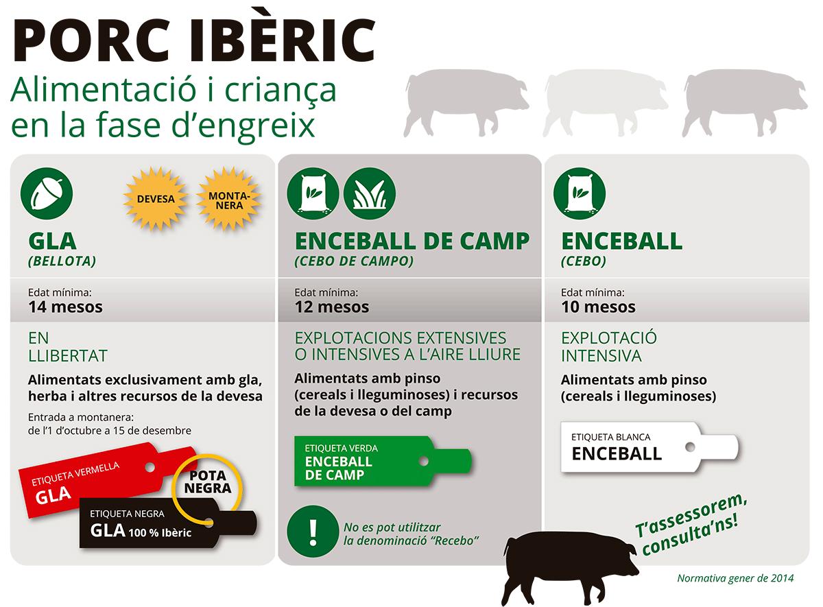 Porc Ibèric